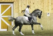 tl_files/images/backgrounds/training/goodtyme-stables-gtraining_004_67d3923.jpg